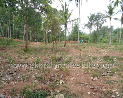 10 cents plot for sale at Thirumala near Aramada Radio Park Trivandrum Kerala