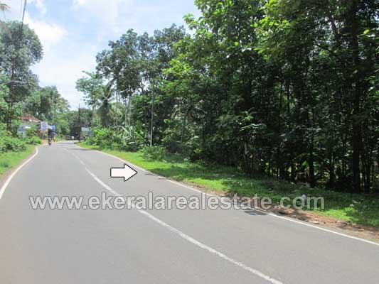 Main Road Frontage Land or plots for sale at Nedumangad Trivandrum Kerala Real Estate