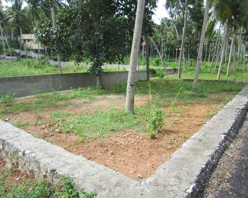 Properties in Njandoorkonam Residential Square Plot at Njandoorkonam Sreekaryam