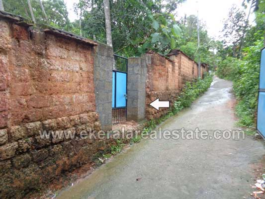 Kerala Trivandrum Chirayinkeezhu House plot ot 39 Cents for Sale Chirayinkeezhu Properties