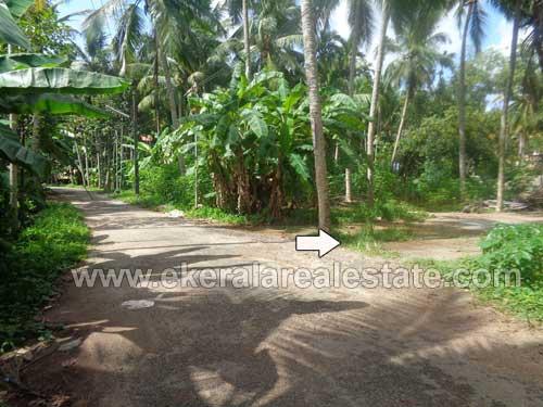 Land ideal for House in Punnakkamugal Thirumala Trivandrum Kerala