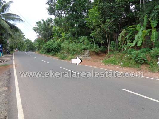 Properties in Kattakada Land Plot in Chemboor Kattakada Trivandrum Kerala