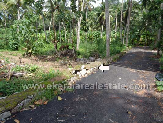 Properties in Kariavattom Land plot in Mangattukonam Kariavattom Trivandrum kerala