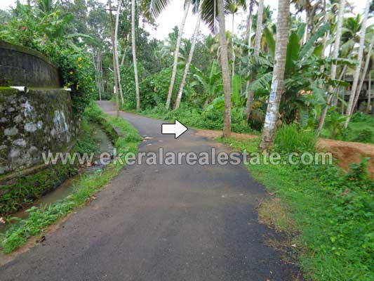 Land Plots for sale at Pallichal near Pravachambalam Trivandrum Kerala