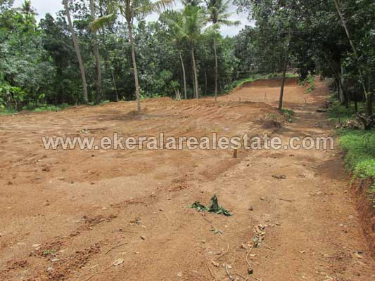 Venjaramoodu Real estate Properties Land Plot in Venjaramoodu Trivandrum Kerala