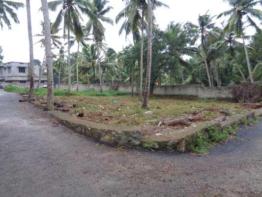 Commercial and Residential land near Balaramapuram at Aralumoodu Trivandrum Kerala