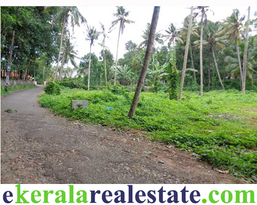 Residential or Commercial Land in Mukkola Nettayam Trivandrum Kerala
