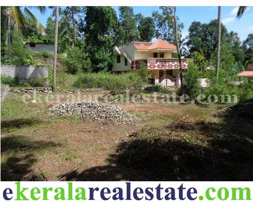 Residential or Commercial Land in Kachani Nettayam Trivandrum Kerala
