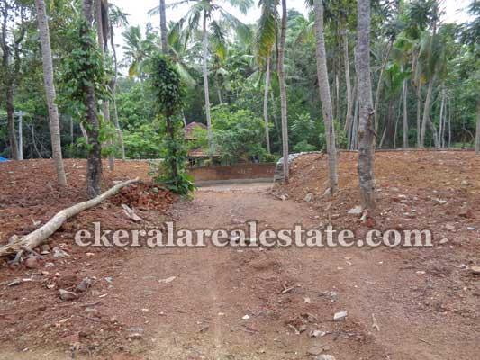 Balaramapuram thiruvananthapuram house plots sale Balaramapuram real estate land
