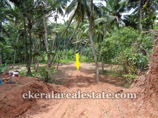 real estate trivandrum vizhinjam Land sale in vizhinjam Trivandrum kerala