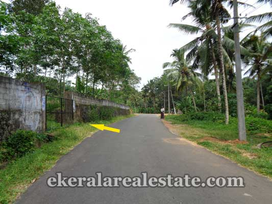 real estate trivandrum Balaramapuram Land sale in Balaramapuram Trivandrum kerala