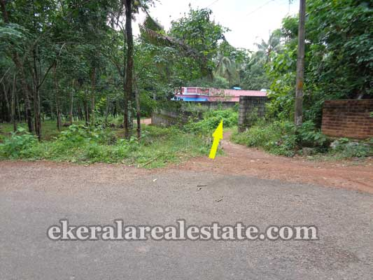 Kallambalam real estate properties land plots sale at Kallambalam trivandrum