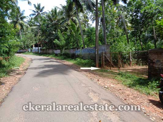 Vizhinjam real estate Kanjiramkulam Land property sale trivandrum kerala real estate