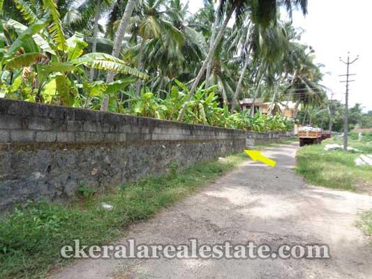 Balaramapuram real estate Thannimoodu land property sale trivandrum kerala real estate
