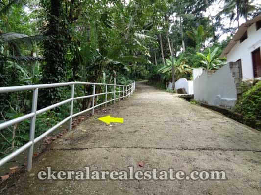 Kallayam real estate Kallayam Land property sale trivandrum kerala real estate