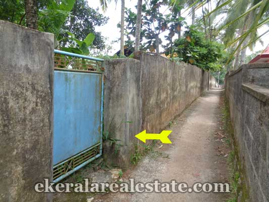 Peyad real estate residential land sale in Vilappilsala Trivandrum Kerala