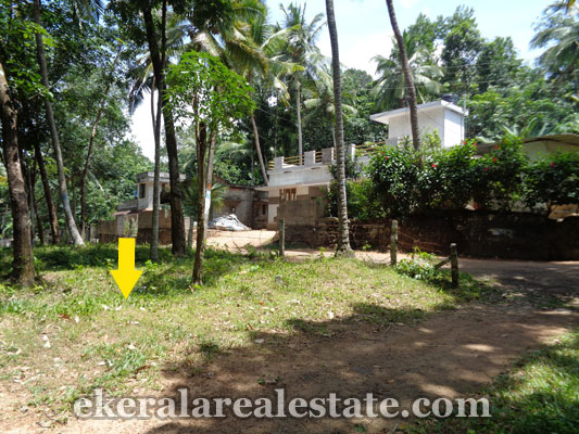 Trivandrum real estate Land for sale at Pattakulam Kattakada kerala properties