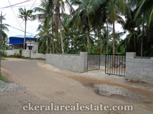 land properties for sale in Puliyarakonam trivandrum real estate