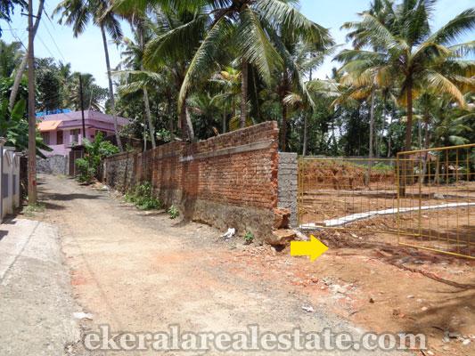 Neyyattinkara real estate Neyyattinkara Land sale in trivandrum properties of kerala