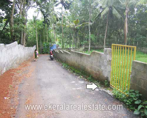 Real Estate Properties in Trivandrum Land for sale at Njandoorkonam SreekaryamTrivandrum