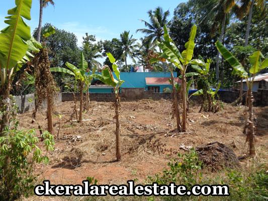 Real Estate Properties in Trivandrum Land for sale at  Neyyattinkara Trivandrum