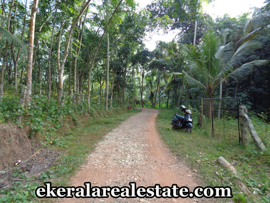 Real Estate Properties in Trivandrum Land for sale at  Kandala Kattakada Trivandrum