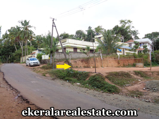 Real Estate Properties in Trivandrum Land for sale at nedumangad Trivandrum