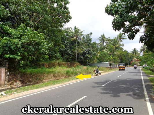 Real Estate Properties in Trivandrum Land for sale at  Kilimanoor Trivandrum