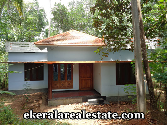 properties-in-trivandrum-house-sale-at-mundela-near-nedumangad-trivandrum-real-estate