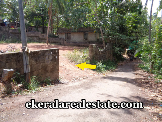 properties-in-trivandrum-land-plots-at-pravachambalam-trivandrum-real-estate