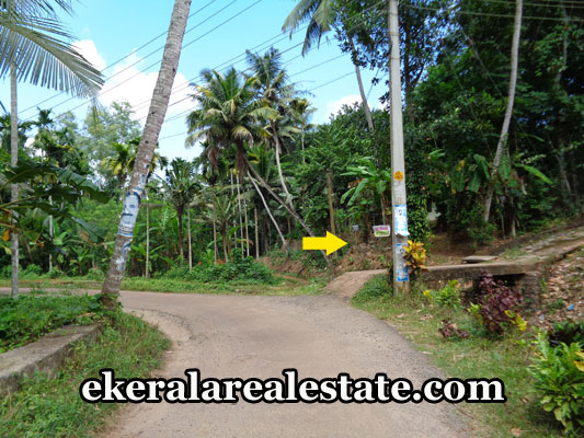 properties-in-trivandrum-10-cents-land-plots-at-nedumangad-trivandrum-real-estate