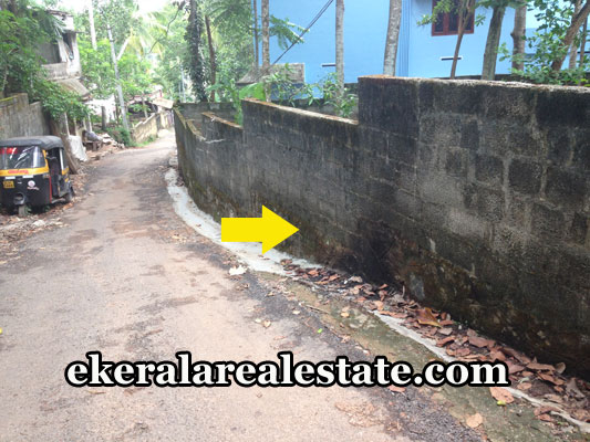properties-in-trivandrum-land-plots-at-kudappanakunnu-trivandrum-real-estate