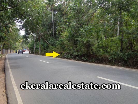 properties-in-trivandrum-land-plots-at-mulloor-vizhinjam-trivandrum-real-estate