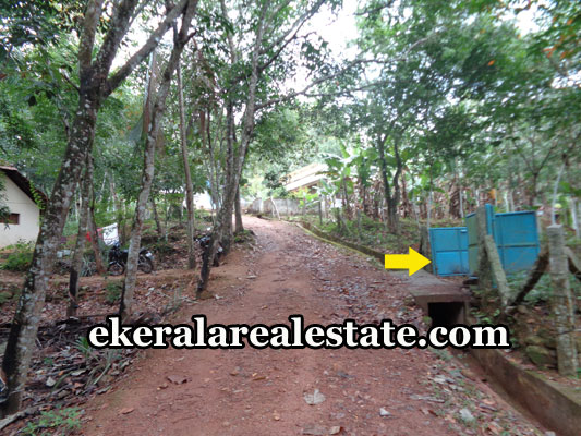 properties-in-trivandrum-1-acres-land-plots-at-kattakada-trivandrum-real-estate