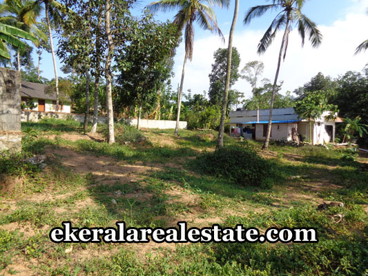 properties-in-trivandrum-land-plots-at-nedumangad-trivandrum-real-estate