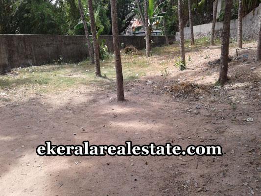 properties-in-trivandrum-land-plots-at-killipalam-karamana-trivandrum-real-estate