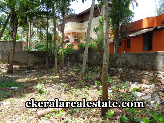 properties-in-trivandrum-land-plots-at-maruthoor-mannanthala-trivandrum-real-estate
