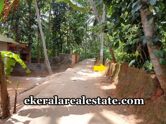 properties-in-trivandrum-30-cents-land-plots-at-neyyattinkara-trivandrum-real-estate