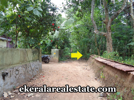 properties-in-trivandrum-89-cents-land-plots-at-kilimanoortrivandrum-real-estate
