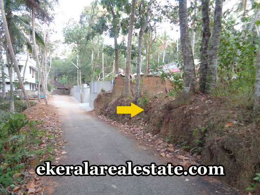 properties-in-balaramapuram-land-sale-at-balaramapuram-trivandrum-kerala-real-estate-properties
