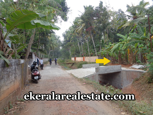 properties-in-vizhinjam-land-sale-at-venganoor-vizhinjam-trivandrum-kerala-real-estate-properties