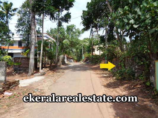 vellayani-real-estate-residential-plots-sale-in-kalliyoor-vellayani-trivandrum-kerala