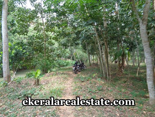 neyyattinkara-real-estate-properties-plots-sale-in-marayamuttom-neyyattinkara-trivandrum-kerala-real-estate