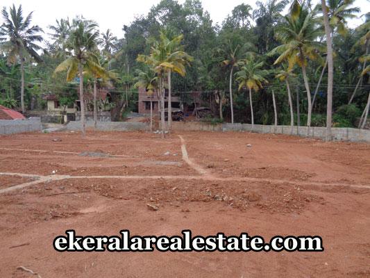 sreekariyam-real-estate-properties-land-sale-in-pongumoodu-sreekariyam-trivandrum-kerala-real-estate