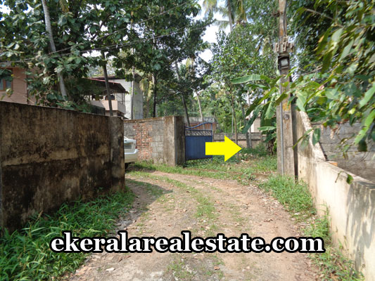 kerala-real-estate-properties-land-plots-sale-in-ptp-nagar-vattiyoorkavu-trivandrum-kerala-real-estate