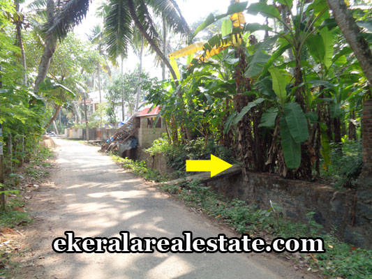 kerala-real-estate-properties-land-plots-sale-in-vizhinjam-uchakkada-trivandrum-kerala-real-estate