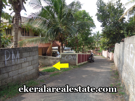 kerala-real-estate-properties-land-plots-sale-in-kunnapuzha-thirumala-trivandrum-kerala-real-estate