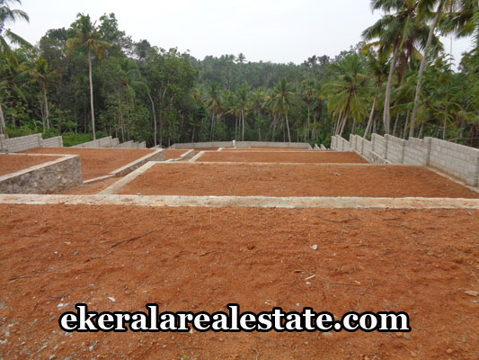 land-sale-in-trivandrum-residential-land-sale-in-vellayani-trivandrum-real-estate