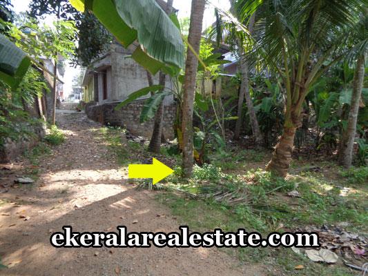 kilimanoor-properties-land-sale-at-kilimanoor-trivandrum-land-sale-in-trivandrum