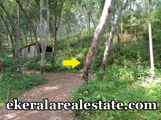 vembayam trivandrum real estate vembayam land house plots sale kerala properties